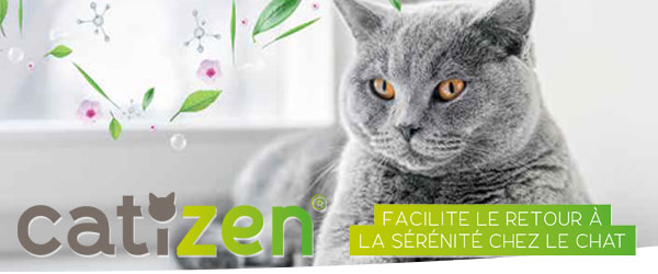Catizen contre le stress des chats